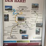 Stoomtrein in het nationale park Harz