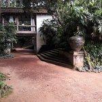 Lunugangaの写真