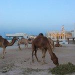 Fanar - Qatar Islamic Cultural Center의 사진