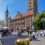 Old town square with golden donkey