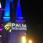 Palm Square Photo