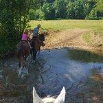 Photo de Walden Creek Horseback Riding Stables