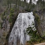 Another waterfall in Mt. Rainier National Park