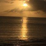 Photo of Big Wave Shrimp