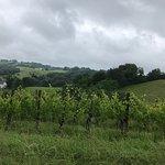 Beautiful Jurancon wine country!