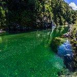 Zdjęcie Pelorus Eco Adventures