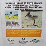Foto de Mornington Peninsula National Park