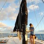 Bilde fra Gemini Sailing Charters