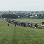 The National Stud. Tours Run by Discover Newmarket Photo