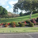 lawn at National_Memorial_Cemetery_of_the_Pacific-Honolulu