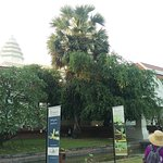 Photo de Angkor National Museum