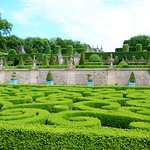 Marvellous garden