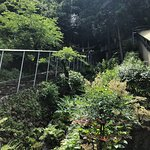 Photo of Ryugado Cave