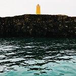 Photo de Whale Watching Reykjanes