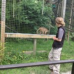 Foto de The Monkey Sanctuary