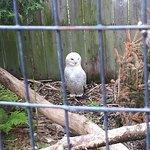 Photo of Zoo Ecomuseum