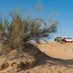 Foto di Dubai Safaris Tour