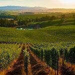 Eola Hills Wine Cellarsの写真