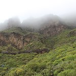 Photo of Natural Park of Teno