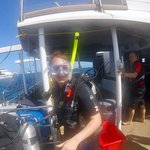 Bilde fra Passions of Paradise Reef Tour