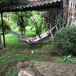 Pura Vida Hotel Photo