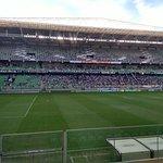 Arena Independencia - Campo do América Futebol Clube MG照片