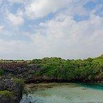 Weekuri Lake Φωτογραφία