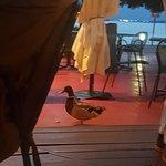 Foto de Tavernetta al Molo