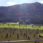 Riserva Naturale Torbiera di Fiave Φωτογραφία