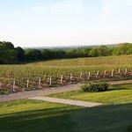 Foto The Restaurant at Vineland Estates Winery