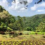 Foto Jardin de Balata