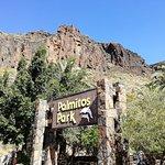 Foto di Palmitos Park