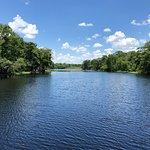 صورة فوتوغرافية لـ St. Johns River Heritage River Tours