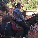 Photo de Canyon Trail Rides
