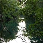 Foto de Manatee Springs State Park