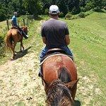 ภาพถ่ายของ Smoky Mountain Trail Rides and Bison Farm