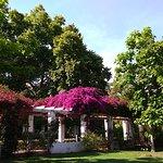 Foto de Parque de Maria Luisa