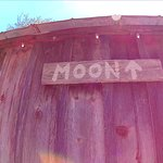 In case you want to howl at the moon, but can't remember where it is.