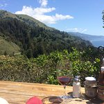 Breathtaking views and heavenly Ambrosia burgers , fries and wine and a sneaky bird eating our f
