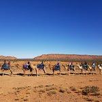 Foto de Pyndan Camel Tracks