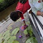 Eco Friendly River Safari照片