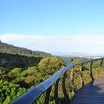 Photo of Kirstenbosch National Botanical Garden