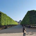Jardin du Palais Royal Foto