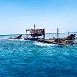 Emperor Divers Sharm El Sheikh의 사진