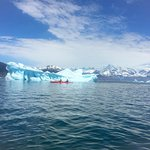 Kayaking by the icebergs
