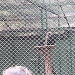 Photo de Nandankanan Zoological Park