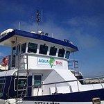 Photo of Aquabus Ferry Boats