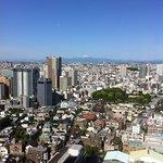 Iwamotoyama Park resmi