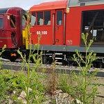 Billede af Midland Railway