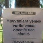 Burası oteli yoldan ayıran bahçe çiti.. dışarda verilen yiyeceklere yasak koymaya ne hakları var